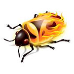 firebug-3.jpg